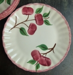 Blue Ridge Crab Apple Luncheon Plate red trim 9 1/2""