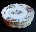 Dresden style Dinner Plates, floral set of 6