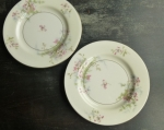 Haviland Limoges NY (2) Apple Blossom Bread Plates 6 1/2