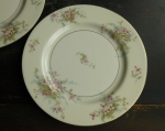 Haviland Limoges NY (2) Apple Blossom Dinner Plates 10 1/4""