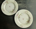 Haviland Limoges NY (2) Apple Blossom Salad Plates 7 5/8