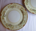 Noritake Cardinal #4731 dinner plates, set of 2