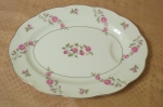 Haviland Limoges NY Delaware Steak Plate or small Platter