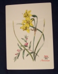 Spode Floral Porcelain Tile, Narcissus, English Bone China